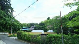 田園生活 1.JPG
